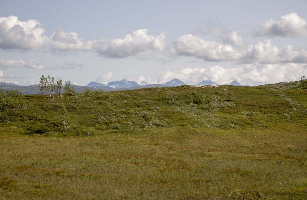 Okstindan Natur- og Kulturpark representerer hele Hemnes.
